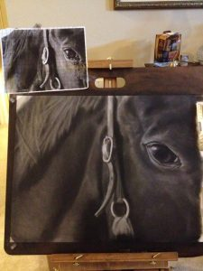 A horse's eyes are set on the side of its head.